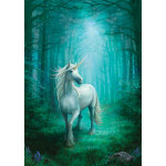 Forest Unicorn Anne Stokes Unicorn Card - 6 Pack